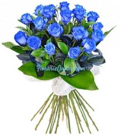 19 trandafiri albastri