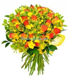 Arsita florala