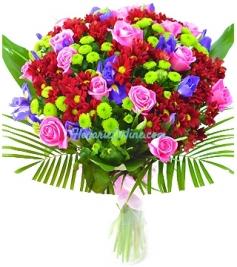 Euforie florala