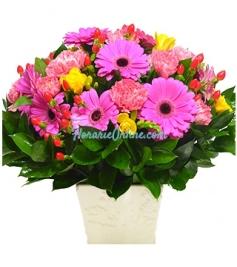 Cub floral